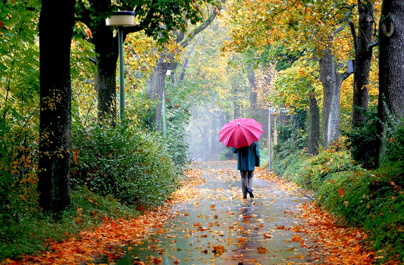 مسافر پاییز